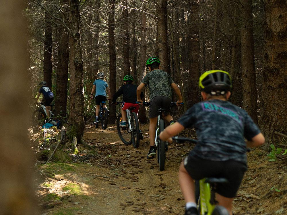 School mountain biking trip through Hanmer Forest